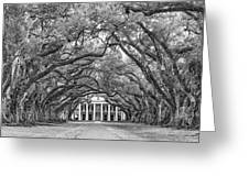 The Old South Version 3 Bw Greeting Card