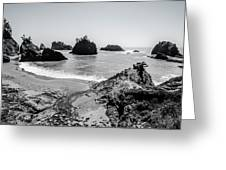 The Oregon Coast In Black And White Greeting Card by Margaret Pitcher