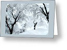 The Pure White Of Snow Greeting Card