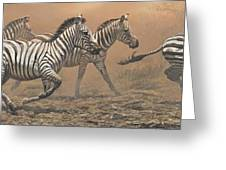 The Race - Zebras Greeting Card by Alan M Hunt