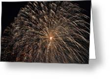 The Saint Louis Missouri 4 Of July Fireworks Greeting Card