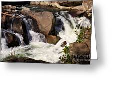 The Sinks In Smoky Mountain National Park Greeting Card