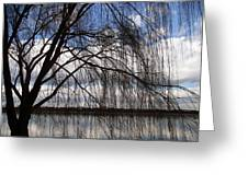 The Veil Of A Tree Greeting Card