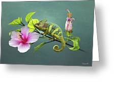The Veiled Chameleon Of Florida Greeting Card