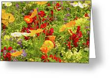 The World Laughs In Flowers - Poppies Greeting Card