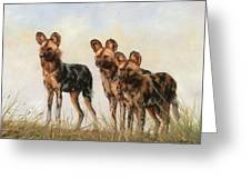 Three African Wild Dogs Greeting Card