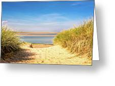 Through The Dunes Over To Budle Bay Greeting Card