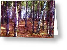 Through The Forest Greeting Card
