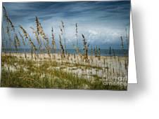 Through The Sea Oats Greeting Card by Judy Hall-Folde