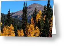 Thunder Mountain Aspens Greeting Card