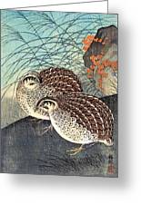 Top Quality Art - Moon And  Quail Greeting Card