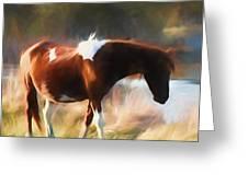 Totem Animal Book Horse Greeting Card