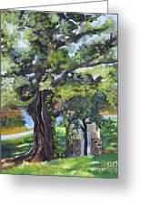 Tree At Cartecay Greeting Card