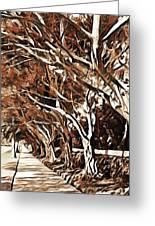 Treelined Greeting Card