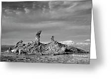 Tres Marias Black And White Moon Valley Chile Greeting Card