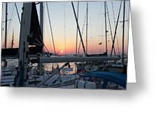 Trieste Sunset Greeting Card by Helga Novelli