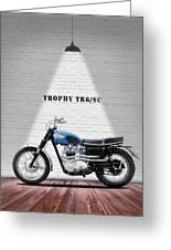 Triumph Trophy Tr6 Greeting Card