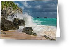 Tropical Beach Splash Greeting Card