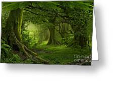 Tropical Jungle In Southeast Asia Greeting Card