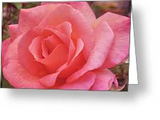 Truly Pink  Greeting Card