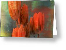 Tulips With Green Background Greeting Card