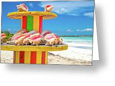 Turks And Caicos Conchs On A Spool Greeting Card