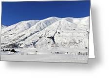 Turnagain Pass On The Kenai Peninsula Alaska Greeting Card