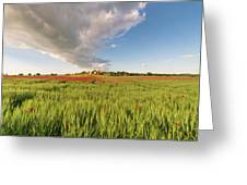 Tuscany Wheat Field Dotted With Red Poppies Greeting Card by Mirko Chessari