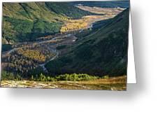 Twentymile Glacier Greeting Card by Tim Newton