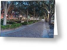 Twilight Panorama Of Charleston Waterfront Park Promenade And Shady Canopy Of Oaks - South Carolina Greeting Card