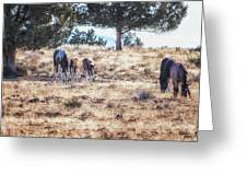 Two For One Greeting Card by Belinda Greb
