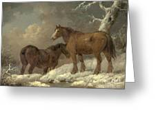 Two Horses In The Snow Greeting Card