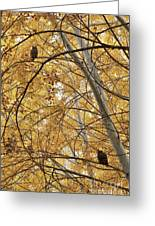 Two Owls In Autumn Tree Greeting Card