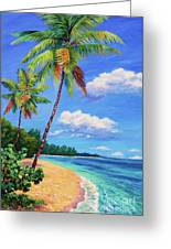 Two Palms In Paradise Greeting Card