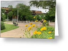 Urban Pathways Butler Park At Austin Hike And Bike Trail With Train Greeting Card