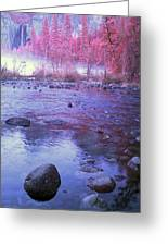Valley River In Yosemite Greeting Card