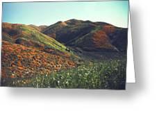 Velvet Hills Greeting Card