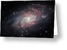 Very Detailed View Of The Triangulum Galaxy Greeting Card