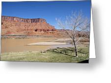 View From A Cabin At Sorrel River Ranch On The Colorado River Ne Greeting Card
