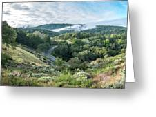 View Of Curved Road Through Dense Forest Area With Low Clouds Ov Greeting Card