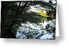View Of The Lake Through The Branches Greeting Card