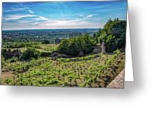 Vines Greeting Card