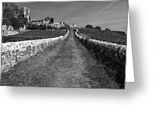 Vineyard In Saint-emilion Greeting Card