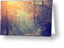 Vintage Photo Of Autumn Forest Greeting Card