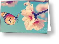 Vintage Spring Image With Butterfly And Greeting Card