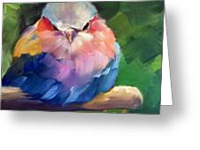 Violet Breasted Roller Bird Greeting Card