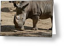 Walking Rhino With One Large Horn And One Small Horn Greeting Card