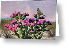 Walking Stick Cactus And Wren Greeting Card