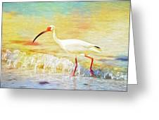 Walking The Waves Of Sanibel Greeting Card