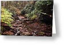 Washington Creek Greeting Card